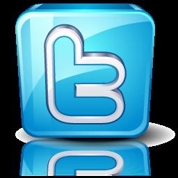 twitter resized 600