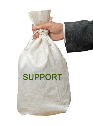 surprising facts about child support payments