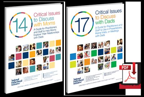 Critical_Issues_ebooks_3d_pdf.png