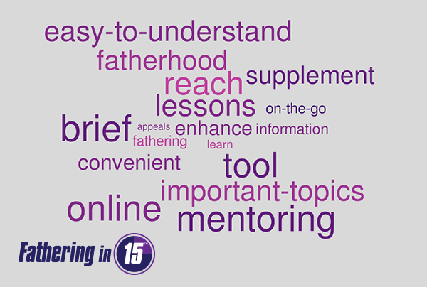 15 Organizations Tell Us in 15 Words or Less: Why Do You Like Fathering in 15™?
